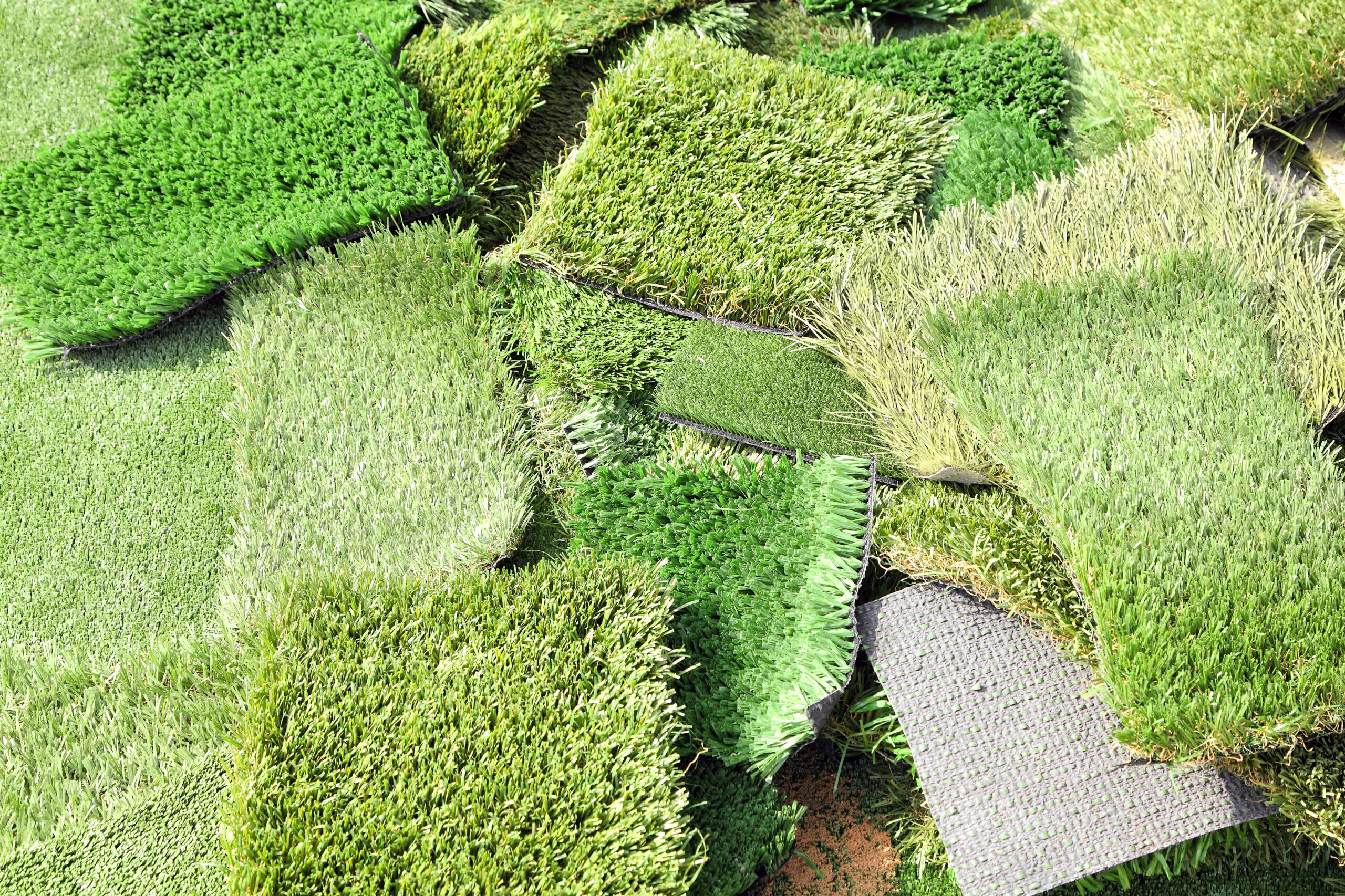 Campioni di erba sintetica
